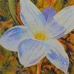 Artist in Residence: Marilyn Rea Nasky